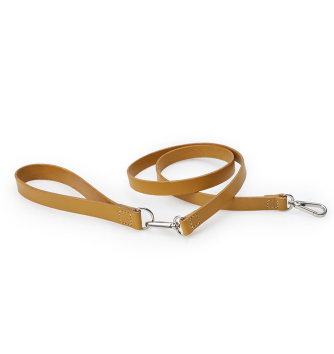 Signature Dog Leash Set Yellow