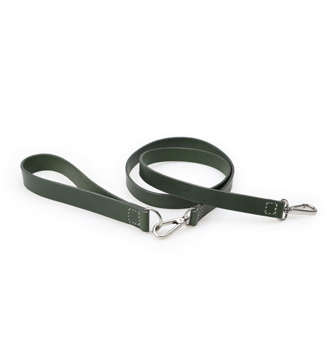 Signature Dog Leash Set Green