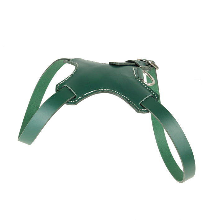 Signature Dog Harness Green