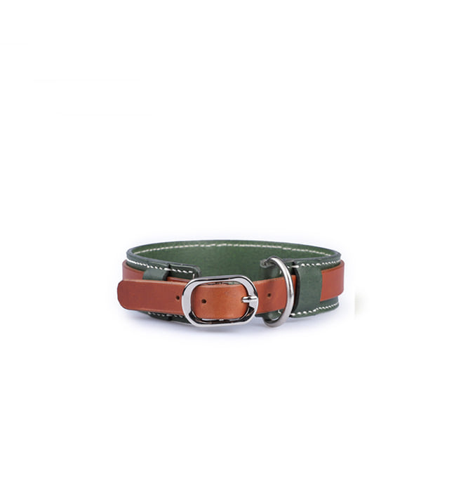 Signature Dog Collar GNBR