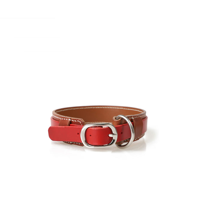 Signature Dog Collar BRRE