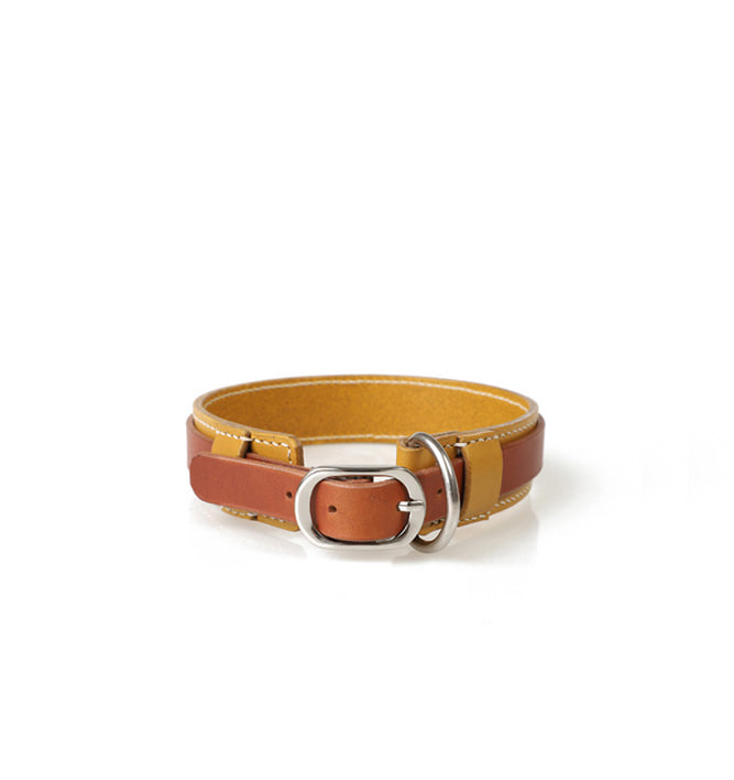 Signature Dog Collar YEBR