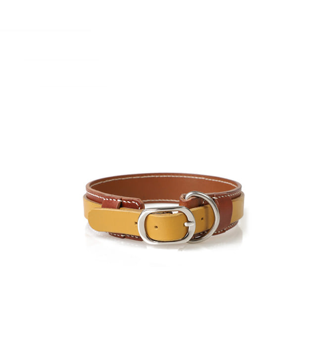 Signature Dog Collar BRYE